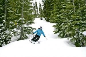 Homewood tree skier