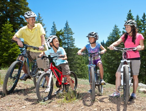 Fun Activities for Families to Try During Summer Break