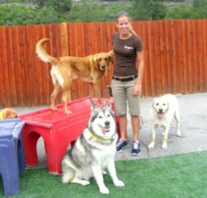 Truckee-Tahoe Pet Lodge provides premium facilities for pets