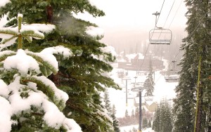 Sugar Bowl reported 62 inches from the latest snow storm. , which is... 				</div> 						<a href=
