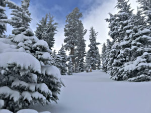 Kirkwood Mountain ski resort gets 10 inches of snow