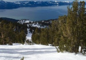 Part of the great allure at Heavenly Mountain is skiing amidst the trees. However, make sure you have a game plan and keep safety issues at the forefront.